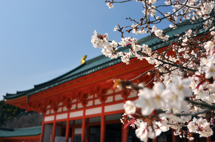 Custom travel itinerary: Japan